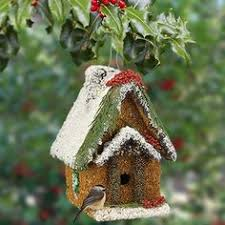 Edible Christmas Tree Decorations For Birds by Twig And Toadstool Our Giving Tree A Valentine For The Birds