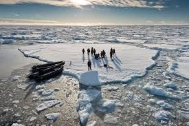 how much does it cost to spot walruses and whales in russia u0027s