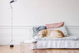 Daybed With Mattress Diy To Try Daybed Mattress Do It Yourself Projects Lonny