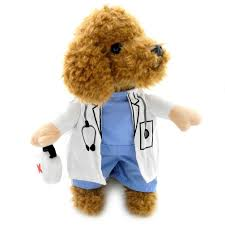 Small Dog Costumes Halloween Amazon Smalllee Lucky Store Small Dog Doctor Costume Fancy