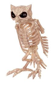 amazon com crazy bonez skeleton owl toys u0026 games