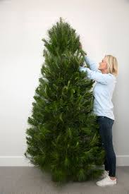 christmas tree delivery the christmas tree elves large 7ft tree melbourne free delivery