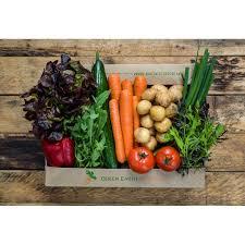 fruit boxes salad box