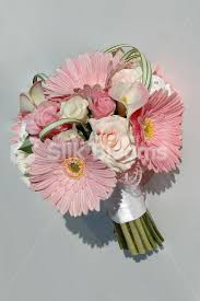 gerbera bouquet shop stunning real touch pink white gerbera and bridal