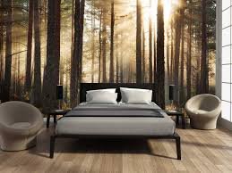 Wall Mural Sunrise In A Forest Wall Paper Self Adhesive Fotobehang Bos Zonsopgang Saved Pinterest Bedrooms Wall