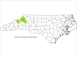 Map Of North Carolina And Virginia by Raleigh Ecological Services Field Office