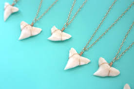 tooth pendant necklace images Genuine shark tooth necklace gold shark tooth jewelry real jpg