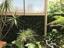 artificial fake plants laurel trellis expandable 1m x 2m ebay