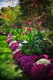 1419 best flower garden pictures images on pinterest beautiful