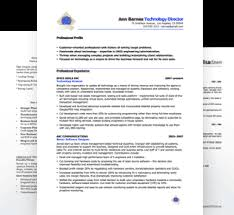 free executive resume sales executive free resume sles blue sky resumes