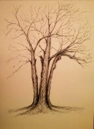 drawing trees klmyart
