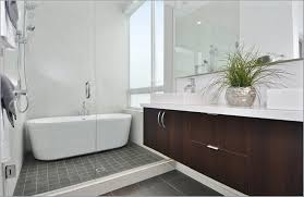Design Of Small Bathroom Creative Of Small Bathroom Layout Ideas With Shower With Shower