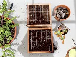 modern interior designers diy gardening projects