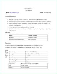 Resume Examples In Word Format by Examples Of Resumes Simple Resume Format Agenda Template Website