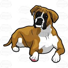 boxer dog origin boxer dog clipart the cliparts