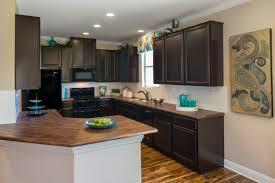 Kitchen Design San Antonio Modern Kitchen Cabinets San Antonio Kitchen