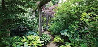 Garden Shade Ideas Shade Garden Design Garden Design