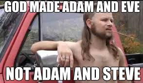 Steve Meme - god made adam and eve not adam and steve almost politically