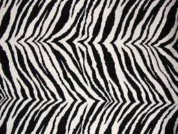 Queen Size Futon Cover Zebra Futon Cover Roselawnlutheran