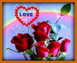 bonitas de rosas rojas con frases de amor imagenes de amor facebook imagenes rosas rojas naturales para mi esposa corazones con