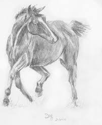 pencil sketch of costa the horse by wenchkin on deviantart