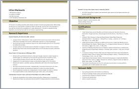 Army To Civilian Resume Examples by Army Resume Resume Example