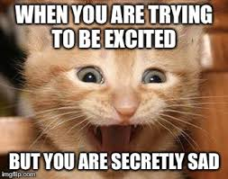 Excited Memes - excited cat memes imgflip