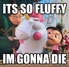 Despicable Me Meme - cute funny despicable me pictures 02 53 08 pm sunday 06 march
