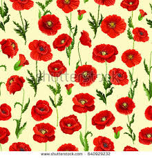 Poppy Camomile Design Elements Stock Vector  Shutterstock - Poppy wallpaper home interior