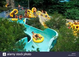 busch gardens vacation packages va home outdoor decoration