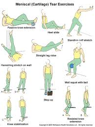 physical therapy exercises knee exercises2 gif workouts