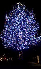christmas light installation calgary 25 unique outdoor led christmas lights ideas on pinterest led
