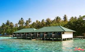 embudu village maldives beach resort u0026 hotel booking
