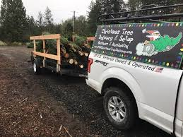 pdx tree delivery home