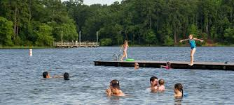 Texas wild swimming images Tyler state park texas parks wildlife department jpg