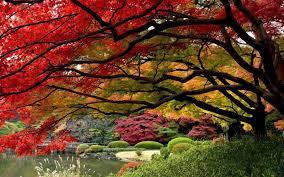 images of beautiful gardens beautiful gardens in japan pixdaus