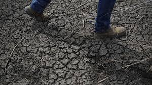 why the california drought affects everyone reveal