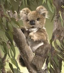 amazon com folkmanis koala hand puppet plush toys u0026 games