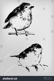 sketch birds stock vector 162006416 shutterstock