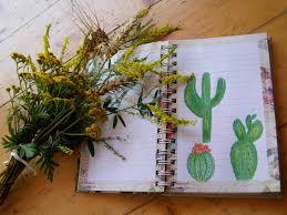 cactus trend the secret of colors