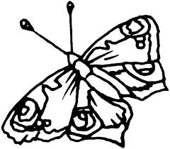 unique butterfly crisp wings coloring download u0026 print