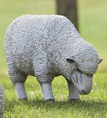 Sheep Toaster 2066 Best Moutons Images On Pinterest Sheep Animals And Farm