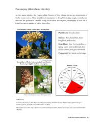 usda native plants somonarchs org native pollinator plants