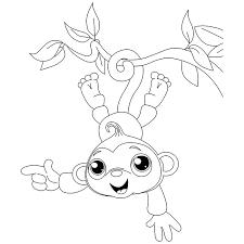 coloriage petit singe accroché à une branche a imprimer gratuit