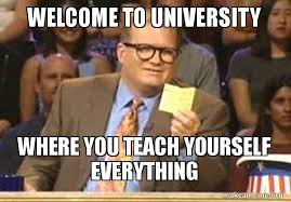 Meme University - welcome to university where you teach yourself everything drew