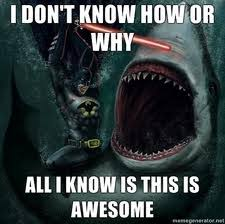 Funny Batman Memes - batman memes n funny stuffz the pwn zone