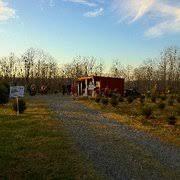 Washington Christmas Tree Farms - evergreen valley christmas tree farm christmas trees 71