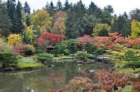 Botanical Gardens Seattle Seattle Japanese Garden Revolvy