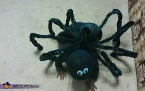 diy spider baby costume photo 3 3