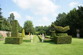 Yew Topiary - yew topiary garden with statues stock photo image 56394508